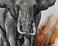 Alice Locoge - Tableaux : Animaux Elephant
